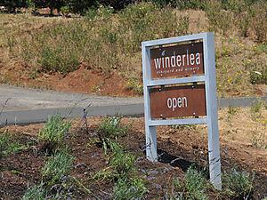 Winderlea trip 2_4