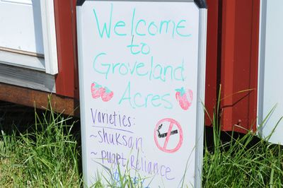 Grovelandacres1
