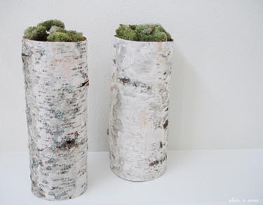 Birch_vases_2_ss_375