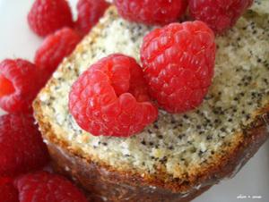 Poppy_seed_cake_500