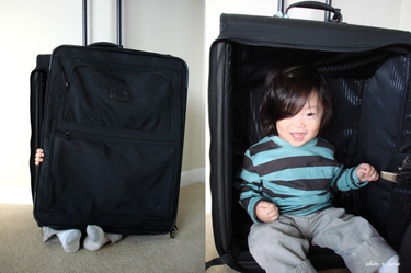Baby_j_suitcase_montage